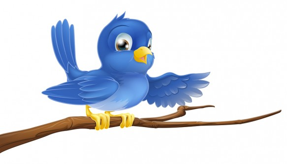 Twitter bigstock-Bluebird-Sitting-On-Branch-Po-32634614
