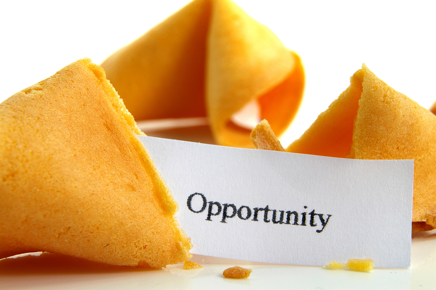 How Leaders Leverage Opportunity through Entrepreneurship