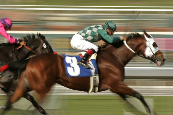 Horse Racing Action Motion Blur