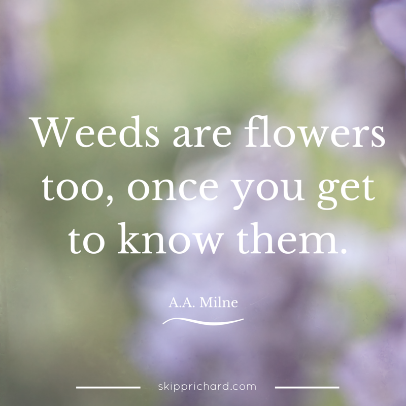 Weeds are flowers too, once you get to