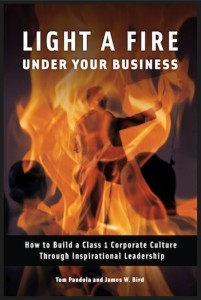 light-a-fire-under-your-business-book-cover-m7b62gu1p2uq9gcqsb85om6482g63dcjbsklilnory