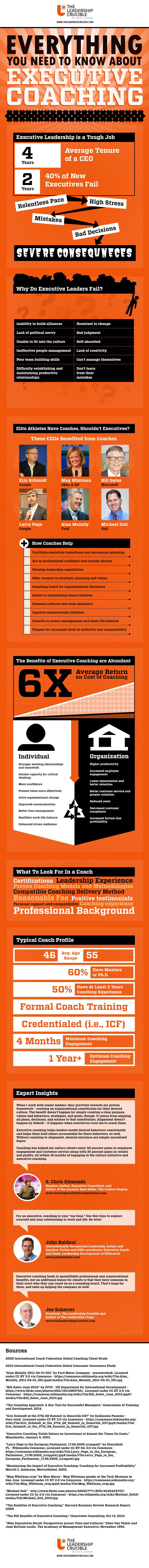 executive-integration-mega-infographic