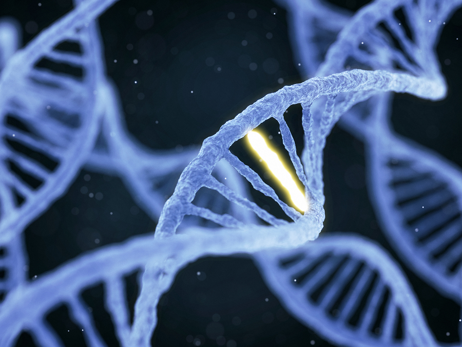 Discover Your Positioning DNA and Dominate Your Competition