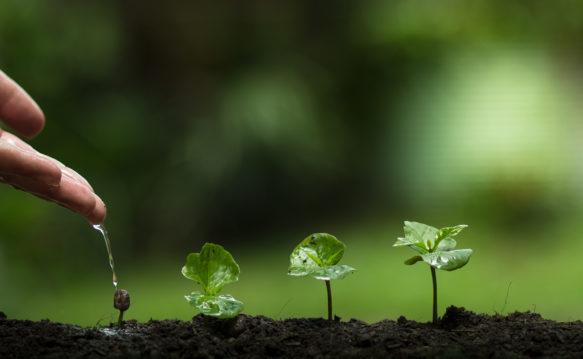 help grow